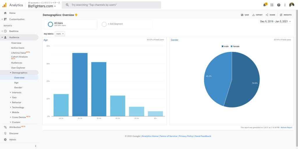 Google Analytics Audience Demographics